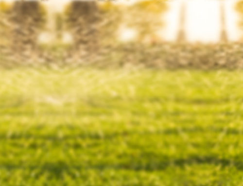 Be Prepared for Summer Irrigation