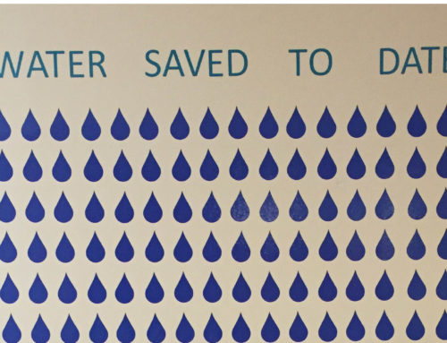 Banyan Water Saves 2.3 Billion Gallons of Water, Celebrates World Water Day